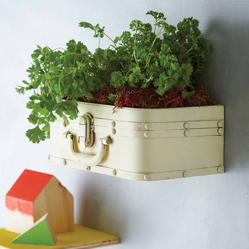original_metal-vintage-style-suitcase-shelf-planter
